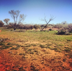 APY LAnds, South Australia